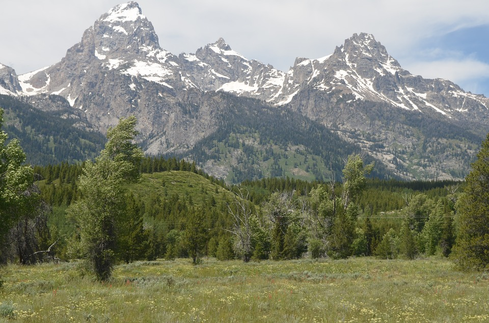 grand-teton-national-park-2322095_960_720
